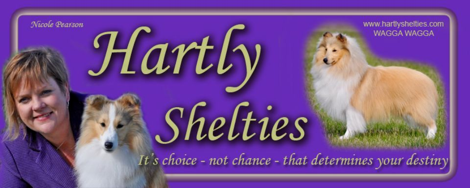 HARTLY SHELTIES